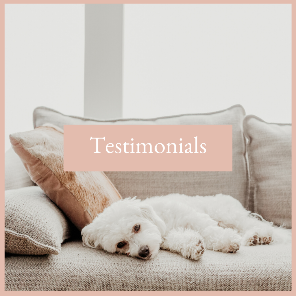 business coach Joelene Mills testimonials resources