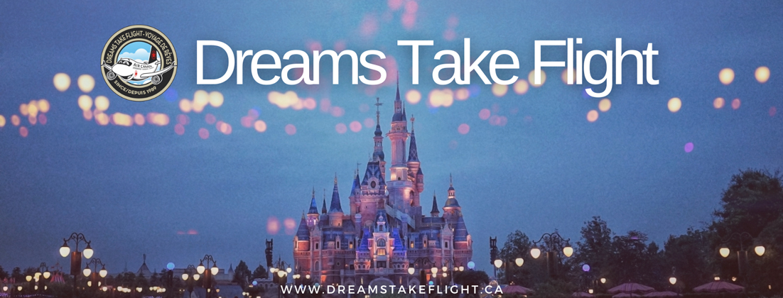 Dreams take flight, link in bio, cinderella's castle
